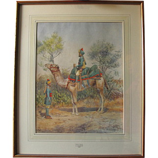 Antique 1891 Watercolour of a Poona Horse (A Camel) in India by Mrs A A Mander wife of Major General Mander Army Military Interest