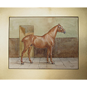 Antique English watercolour watercolor of Reuben - a Horse by G Roots 1900