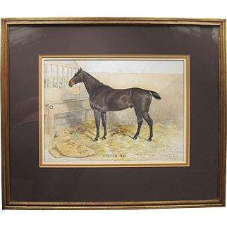 Antique English Watercolor Watercolour of a Race Horse Racehorse Tipster by HV Richardson