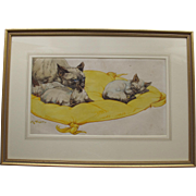 Pushti by much listed Artist Kay Nixon Siamese Cat Kitten Watercolour watercolor