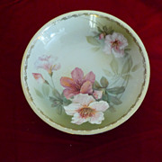R.S. Tillowitz Silesia Handpainted Floral Bowl