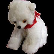 Real Fur Polar Bear Germany