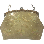Plastic Covered Purse w Pastel & Gold Metallic Floral Embroidery