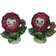 Vintage Anthropomorphic Salt Pepper Shakers PY Flower Faces