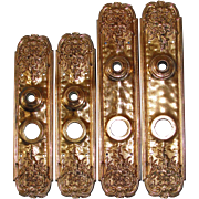 Exceptional Antique Gilded Bronze Door Backplates from the Victorian Era - Two sets!