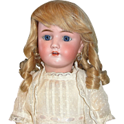 "Lovely 24"" Heinrich Handwerck  Bisque Doll In stunning Original Dotted Swiss Dress"