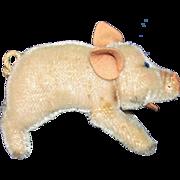1960's Steiff Jalant Pig