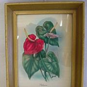 Vintage Tropical Ted Mundorff Airbrush Art Print-One of 3