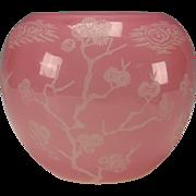 Antique Steuben Carder Rosaline Glass Vase Ming Tree