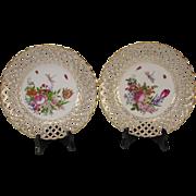 Antique German Meissen Porcelain Hand Painted Floral Bug Reticulated Plates 18c