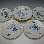 FINE Antique KPM German Porcelain China Hand Painted Floral Dinner Plate SET of 12