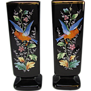Antique Bohemian Moser Black Amethyst Glass Enameled Parrot Vases