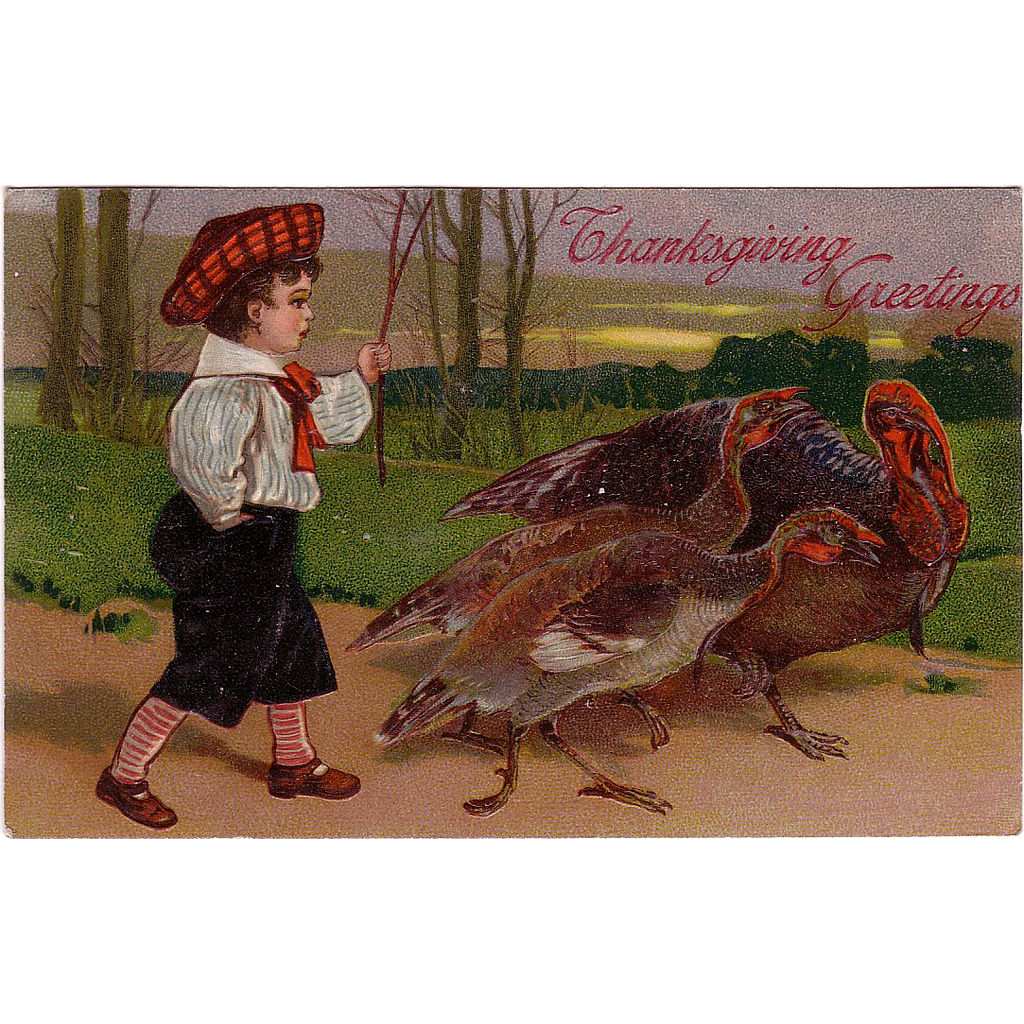 "Postcard "" Thanksgiving Turkeys """