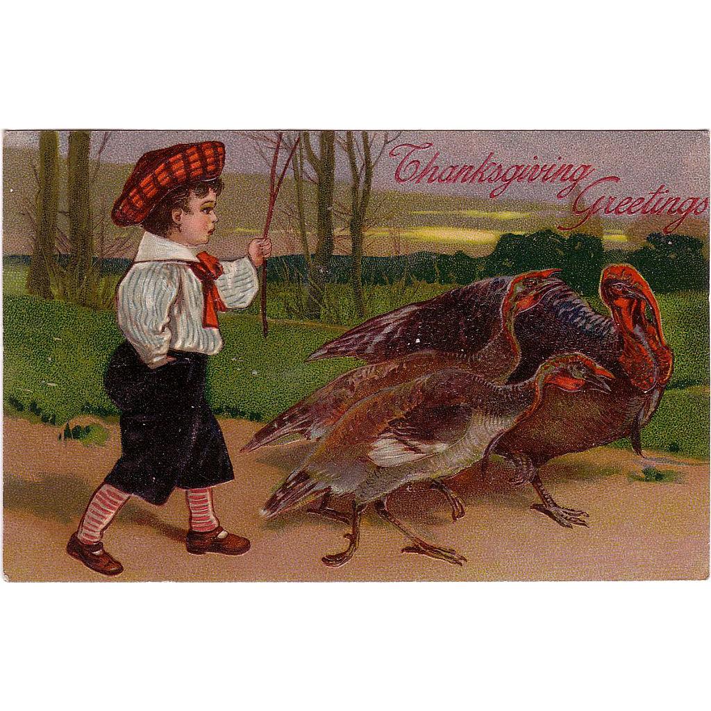 """Postcard """" Thanksgiving Turkeys """""""