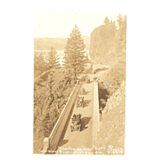 "R.P.P.C. of the ""Columbia River Highway Oregon of Shepard's Dell"""