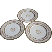 "Beautifully Decorated (3) 1890's Haviland Limoges France 9 1/8"" Plates"