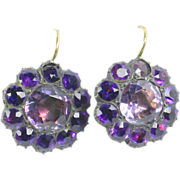 Fine early Purple paste earrings