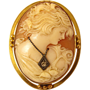 Antique 10k Yellow Gold Carved Shell Cameo Brooch / Pin