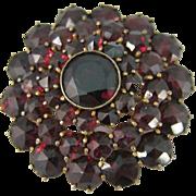 Vintage Bohemian Gilt Silver Rose Cut Garnets Pin Brooch