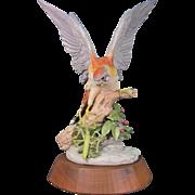 Rare Cybis Red Tailed Hawk with Praying Mantis #230 1977