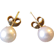 Classic 14K Yellow Gold Pearl Stud Earrings