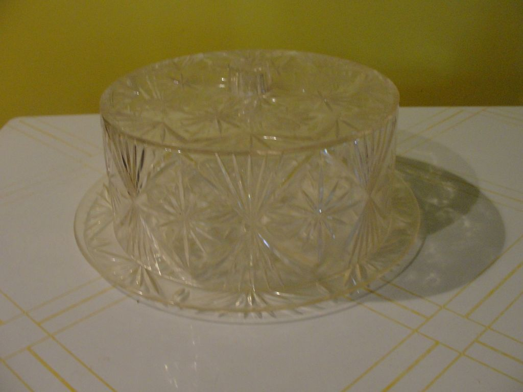 Roses in Acrylic Cake Plate and Dome Cover - g