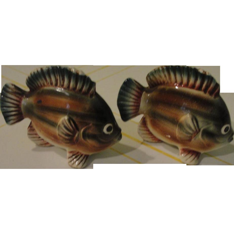 Fishy Fishy Brown Stripe Fish Salt and Pepper Shakers - b147