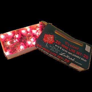 Dexter's 20 Rose Lite Set in Box - b217