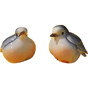 Plump Bluebirds Salt and Pepper Shakers  - b212
