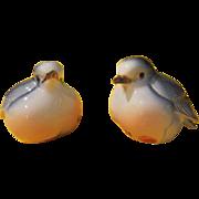 Plump Bluebirds Salt and Pepper Shakers  - b212