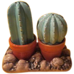 Cactus in Flower Pots Salt and Pepper Shakers - b212
