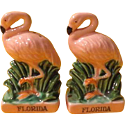 Florida Flamingos Salt and Pepper Shakers - b212