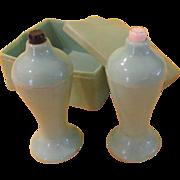Sage Green Cavanite Shakers in Box - b217