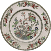 Indian Tree Dinner Plate Johnson Bros Green Key Cream