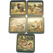 Pimpernel Waterfowl Ducks Cork Coasters