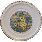 Florida Map Souvenir Pre Disney Plate Full Color Gadroon Border Gold Trim
