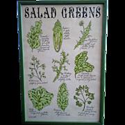 Salad Greens Framed Art Print Pati Redding Soovia Janis 1968 13 x 19