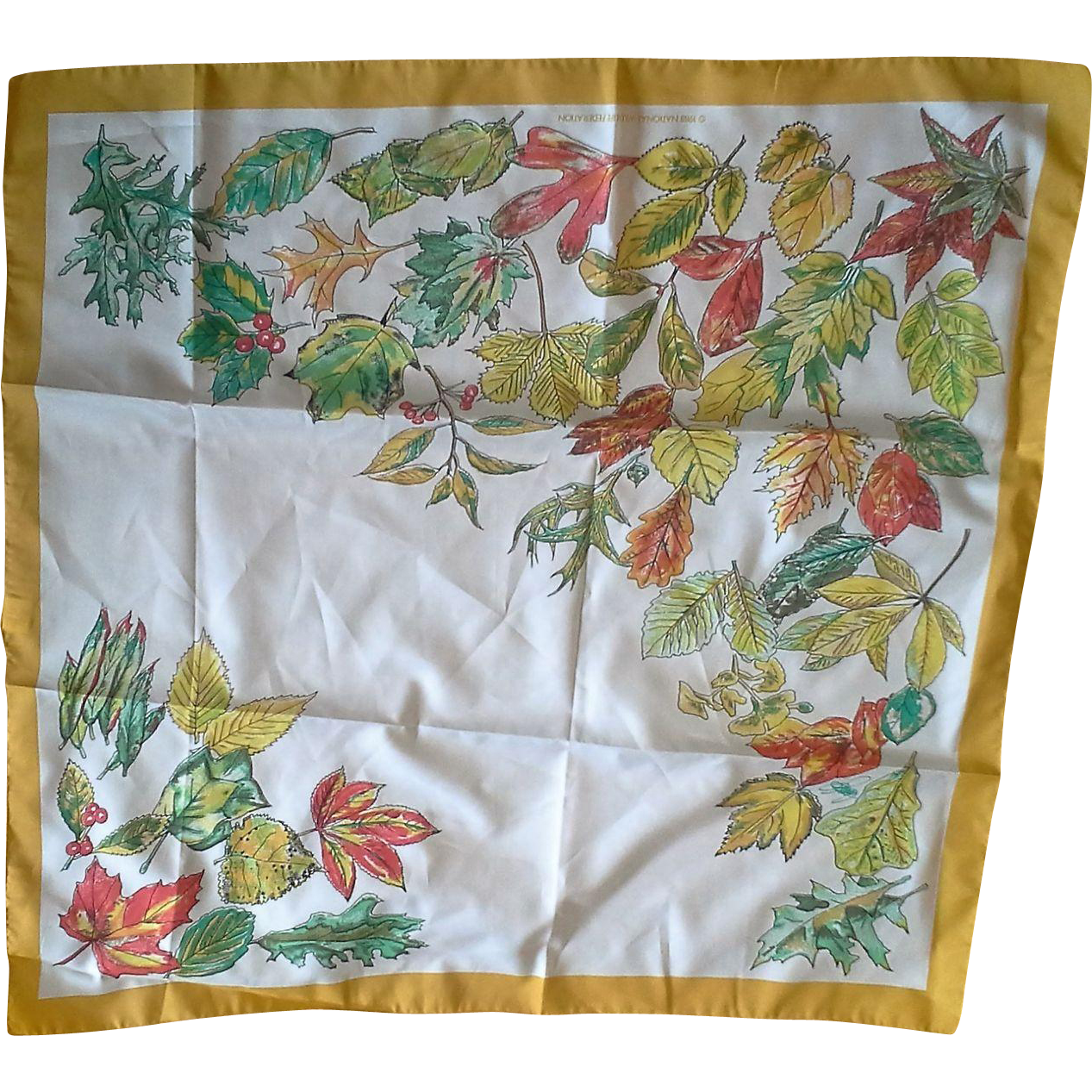National Wildlife Federation 1988 Scarf June Critchfield Crepe de Chine
