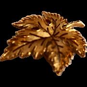 Crown Trifari Brushed Gold Tone Maple Leaf Pin Brooch