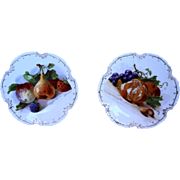 Fruit Transfer Marseille Zeh Scherzer Bavaria Small Cabinet Plates 7 IN Pair