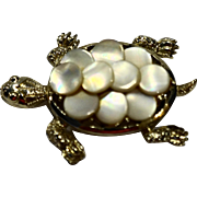 Mother of Pearl Discs Turtle Shell PIn Brooch Gold Tone