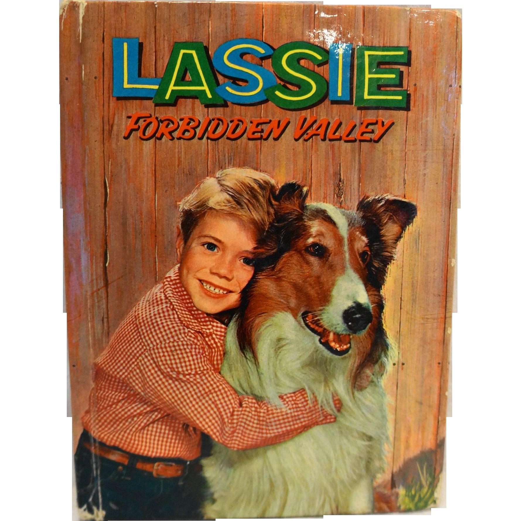 Lassie Forbidden Valley 1959 Hardcover Book Doris Schroeder