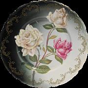 Rosenthal R C Bavaria Malmaison Roses Cabinet Plate 10 IN Porcelain