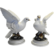 Andrea by Sadek White Dove Figurines Statues Porcelain Bisque Birds
