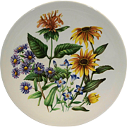 Wildflowers of the Eastern United States Avon Wedgwood Plate 1976