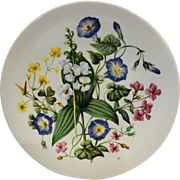 Wildflowers of the Southern United States Avon Wedgwood Plate 1976