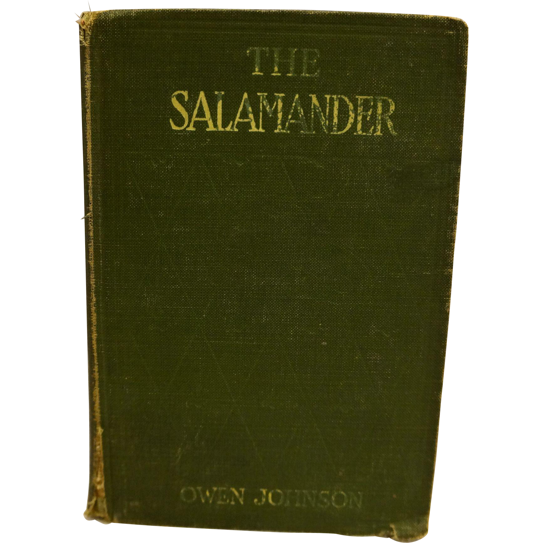 The Salamander by Owen Johnson Green Hardcover 1914