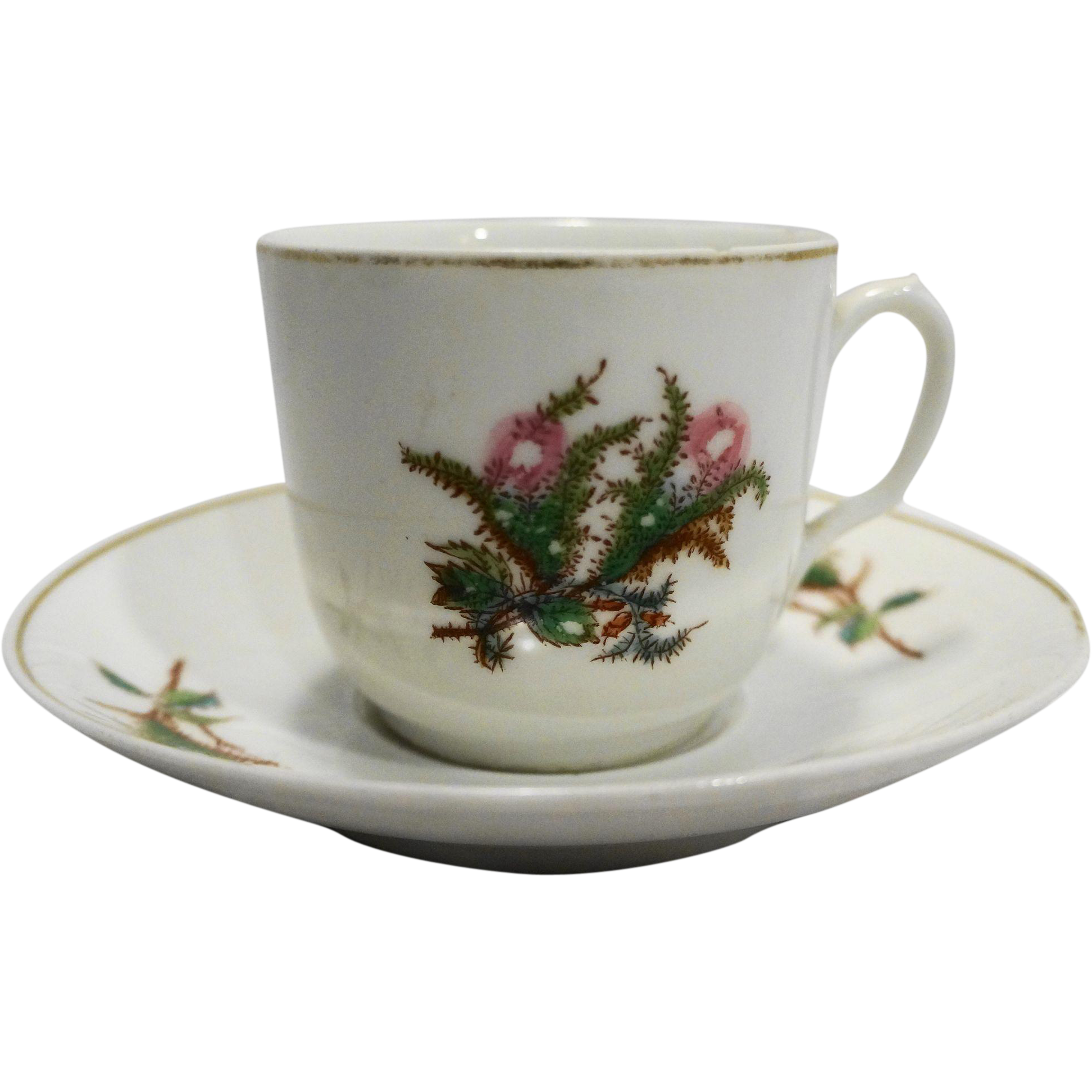 Charles Haviland Moss Rose Limoges Cup Saucer 1880s