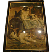 "1900: Original New York Sunday World Insert "" The Playful Kittens "" by Charles Van Den Eycken"