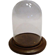 Miniature Glass Display Dome
